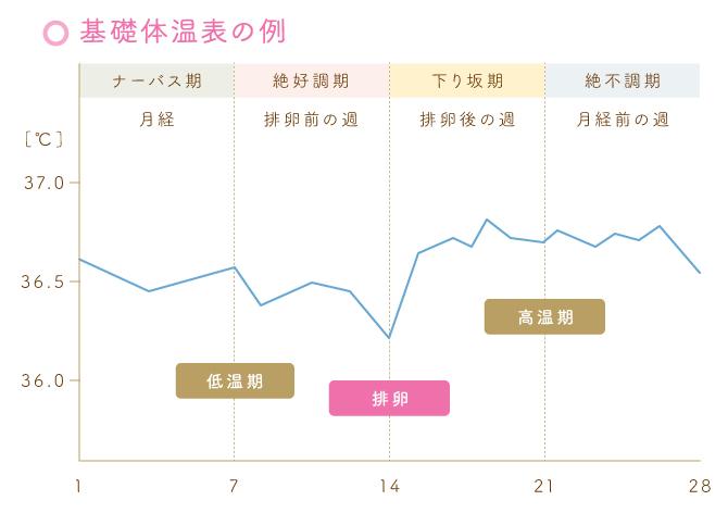 基礎体温表の例